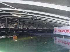 Planta rodaballo Mira_ Acuinova acuicultura