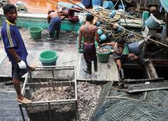 Abusos pesca EJF