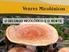 O recurso micolóxico e o monte