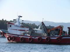 Barco batea