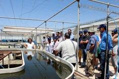 Investigadores de la UMA visitan la estación experimental 'Las Palmerillas' ubicada en El Ejido
