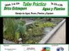 Taller Práctico de Brico Estanques Agua Plantas e Ikebanas