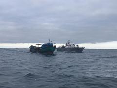 Detención pesca ilegal tiburón buque Perú