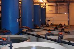Aquaexcel 2020 acuicultura