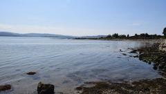 Anfaco-Cecopesca trabaja en el establecimiento de una metodología para detección en agua de mar especies de microalgas productoras de toxinas. Foto: Anfaco