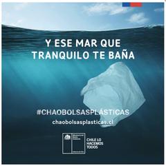 Chile bolsas
