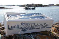 Loch Duart acuicultura salmón Escocia