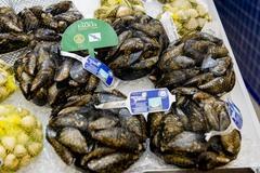 Mejillón de Galicia DOP mercado
