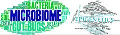AquaIMPACT: Microbioma y epigenoma en un nuevo Proyecto H2020 acuicultura