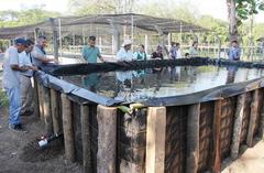 Entrega de módulos acuícolas para el impulso de la acuicultura familiar en El Salvador. Foto: MAG