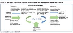 Balanza comercial comunitaria