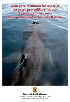 Guía de las especies protegidas en las Islas Baleares