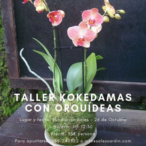 Taller de Kokedamas con orquídeas