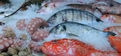 Mercado_pescadería