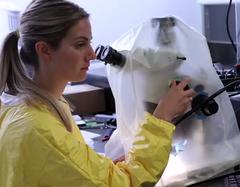 Investigación en acuicultura en Canadá