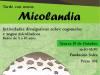 Micolandia