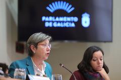 La conselleira Rosa Quintana durante la presentación de los presupuestos de su departamento para 2019