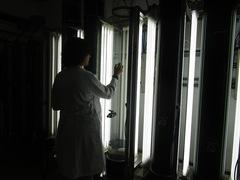 Investigación en acuicultura Foto: IPac. Acuicultura