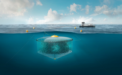 Proyecto de desarrollo acuicultura sumergible Atlantis Subsea Farming Akva Group