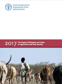 El impacto de los desastres y crisis en agricultuira, y seguridad alimentaria