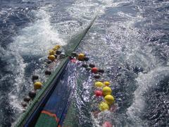 Pesca redes