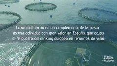 El sector pesquero y de acuicultura _ Fedepesca