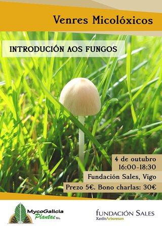 Introdución aos fungos