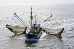 Pesca Eléctrica