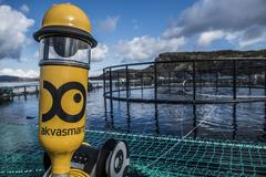 Grupo AKVA acuicultura