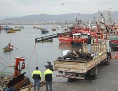 Retirada de residuos en Chile