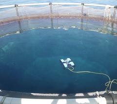 AUV desarrollado en el proyecto TAPAS 2020 para minimizar los escapes acuicultura