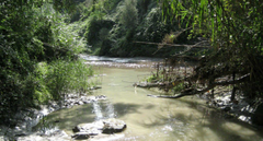 Una de las cuencas estudiadas en España es la del río Llobregat. / CSIC