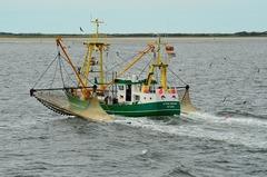 Pesca Báltico