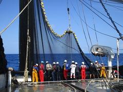 Buque atunero de atún de Opagac
