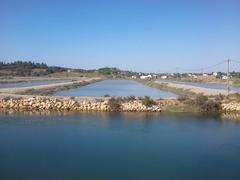 Esteros Portugal acuicultura