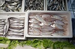 Pescado Nifes