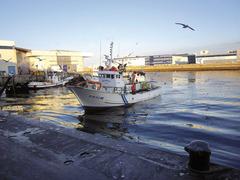 Entrando en el puerto de Vigo