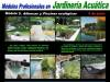 Módulo 5 Jardinería Acuática: Albercas y Piscina Ecológicas