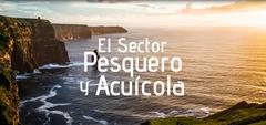 El sector pesquero y de la acuicultura_ Fedepesca