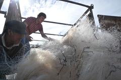 Reciclaje de redes en Chile