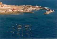 Acuicultura Mediterráneo