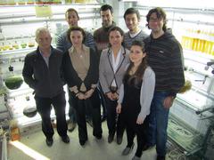 Grupo de Biotecnología Marina y Acuicultura