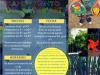 Campamento NaturArte 2017