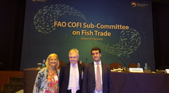 Aurora de Blas COFI Fish Trade Chair