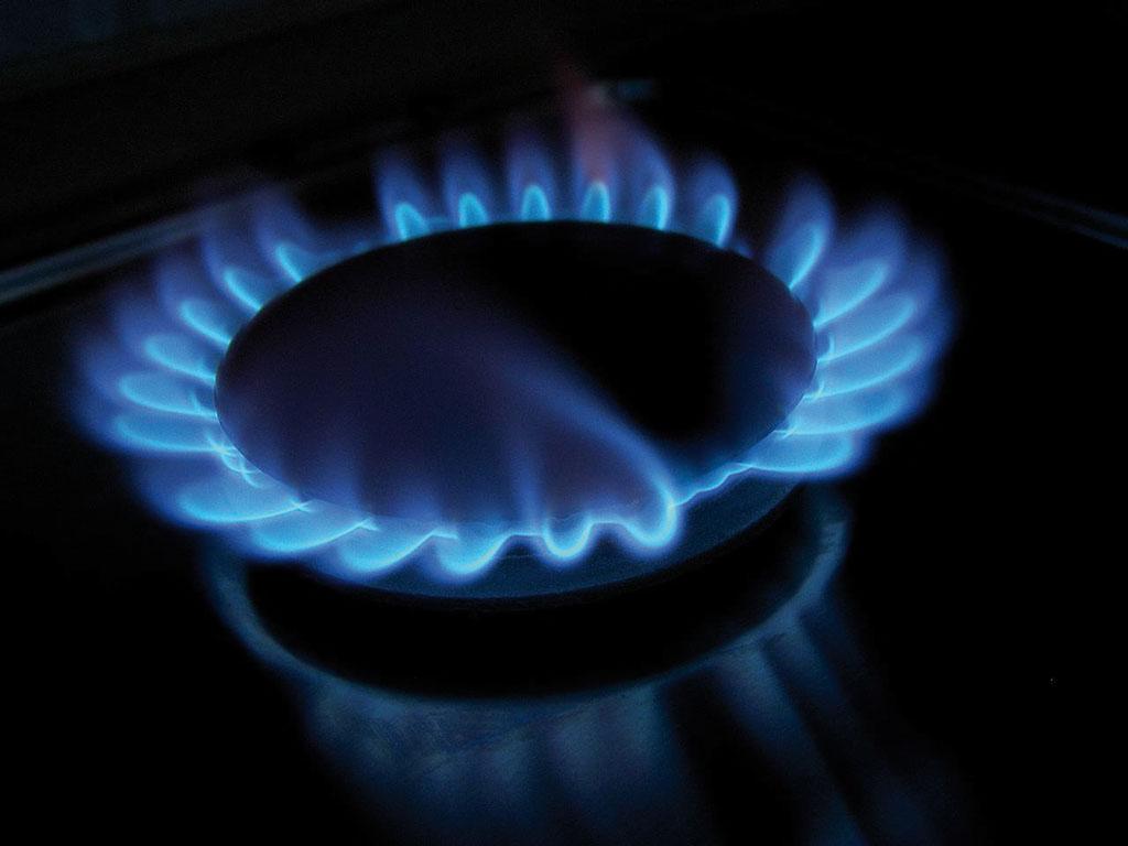 Sostenibilidad entre fogones en portada industrias pesqueras - Fogones a gas ...