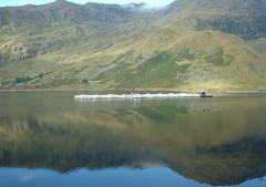 Acuicultura Escocia