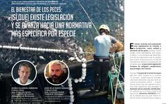Artículo El bienestar de los peces: (sí que) existe legislación y se avanza hacia una normativa más específica por especie, por Morris Villarroel y Jesús de la Fuente