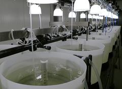 Nuevas instalaciones de ATC Hirtshals, en Dinamarca. Foto: BioMar