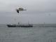 Falklands barco