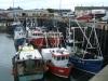 Barcos de pesca en Irlanda del Norte